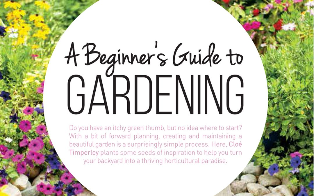 A Beginner's Guide to Gardening
